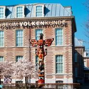 Drie volkenkundige musea fuseren